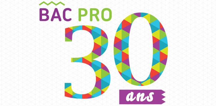 Site internet du lyc e du pays d 39 aunis de surg res - Bac pro decorateur interieur ...