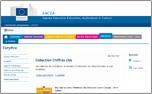 Nouvelle fenêtre vers Agence Executive Education, Audiovisual et Culture