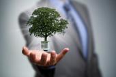 Les marchés financiers pour l'efficacité énergétique