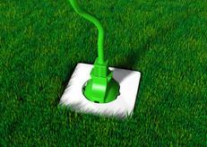 Prise sur la pelouse