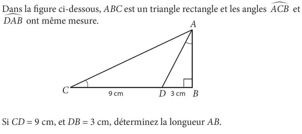 DNB Pondichéry 2018 [Maths] - Page 3 Item_maths_TIMSS-CPGE_916110.54