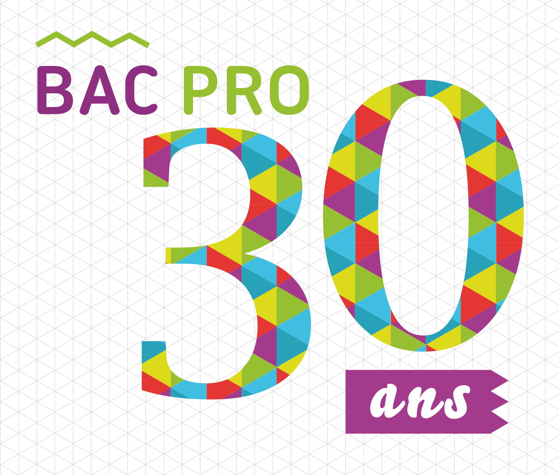 http://cache.media.education.gouv.fr/image/30_ans_bac_pro/59/0/VISUEL_30ANS_BACPRO_490590.jpg