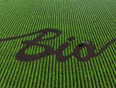 Rencontre de partenariat sur les projets européens en agriculture biologique