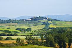 Renaissance rurale