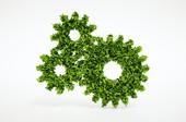 Appels 2017 du défi 2 : Bio-innovation pour des produits et services durables (2 étapes)