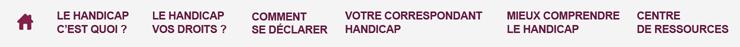 Menu de navigation - Site Handicap - Accueil