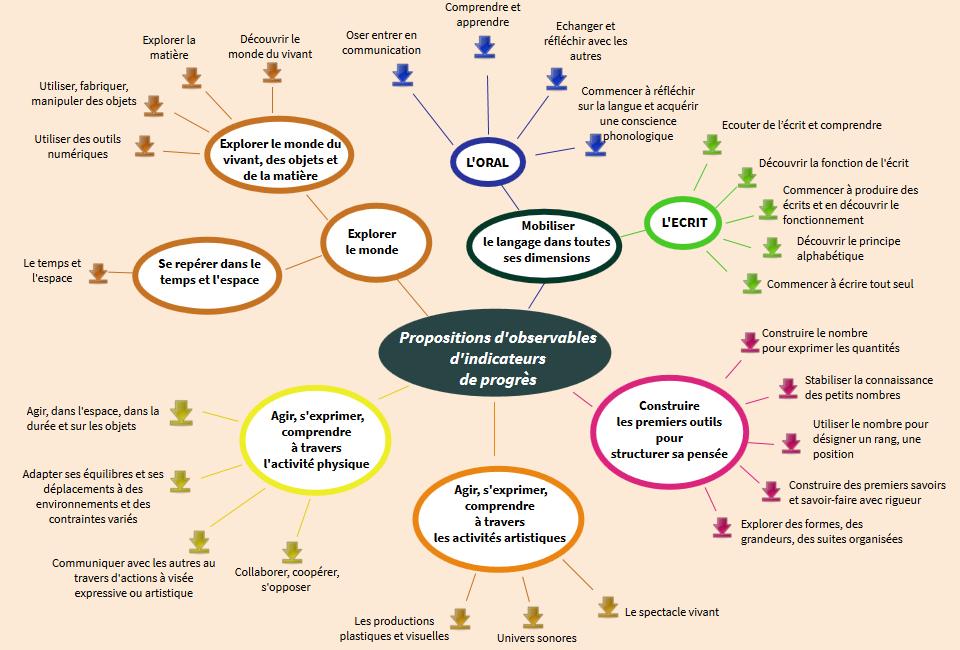 Les acquis du cycle 1 (maternelle) Readymagimage_549112