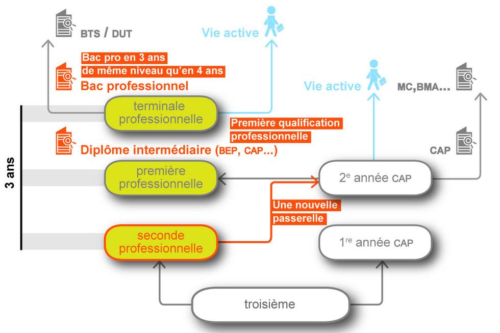 Rapport De Stage Agricole Bac Pro
